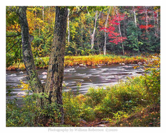 Ausable River #2