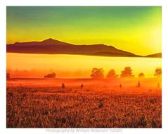 Fog, Norman Ridge #2