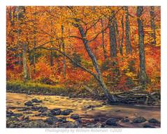 West River Trail, Ausable #4