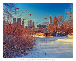 Winter, Central Park