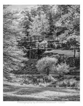 Innisfree Gardens #10