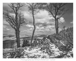 Spring Snow, Blue Ridge