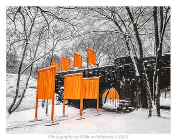 Gates, Central Park #4