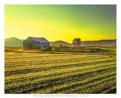 Barn, Norman Ridge