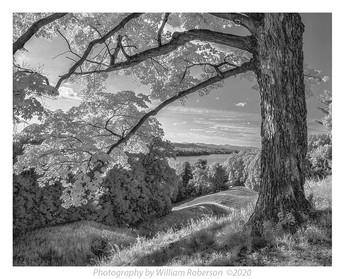 Hudson River View