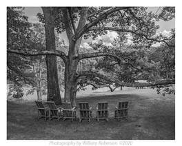 Innisfree Gardens #19