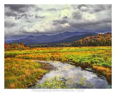 Stream, McKenzie Mountains