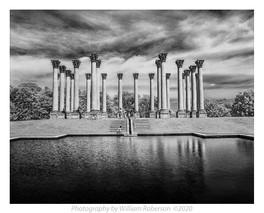 National Arboretum #2