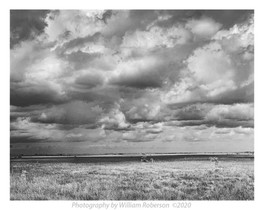 Storm Clouds, Everglades