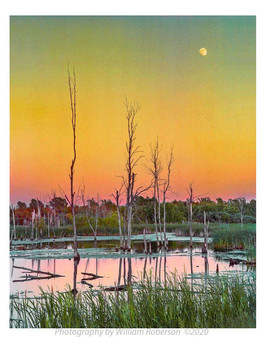 Moon over Iroquois