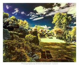 Innisfree Garden (watercolor)
