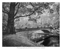 Bridge, Vanderbilt Estate
