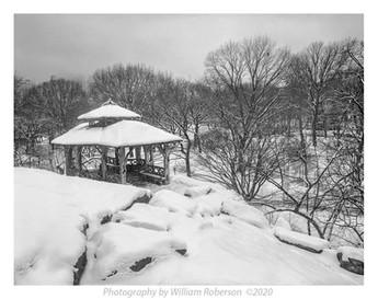 Gates, Winter Central Park