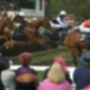 Perth racecourse.jpg