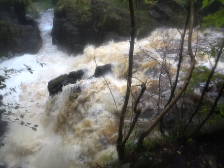 Happy Mondays: Week 4 - Waterfalls