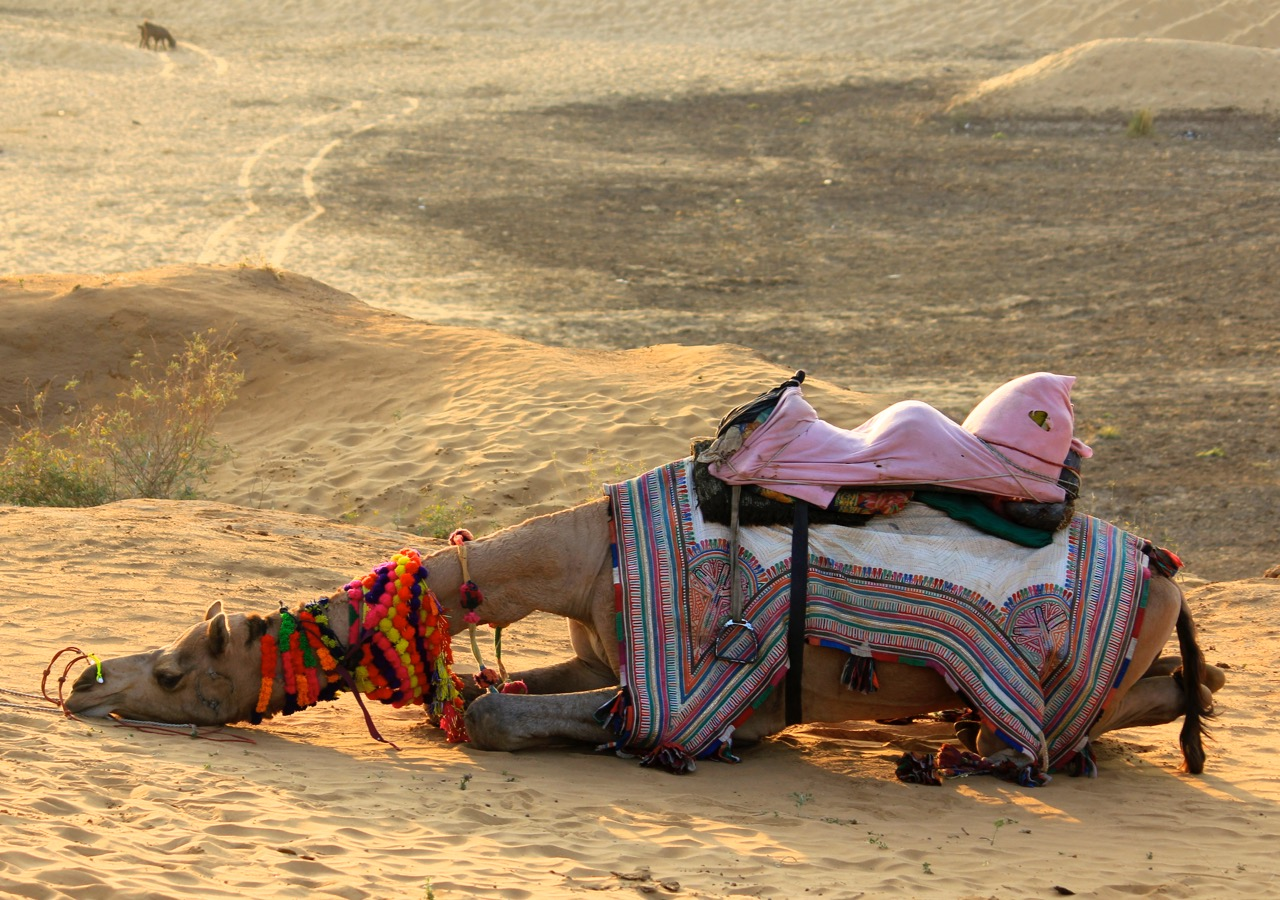 angle of repose, Pushkar