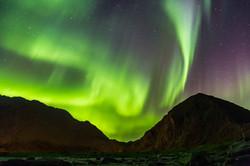 aurora fills the sky above Uttakleiv