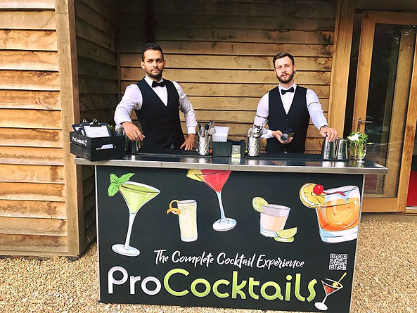 All-Inclusive Cocktail Bar.jpg
