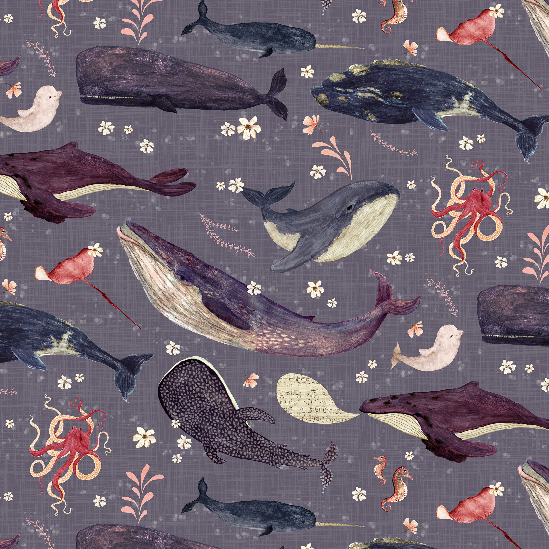 Whale's song lavender