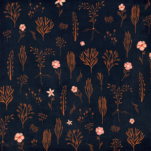 Floral midnight and orange