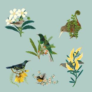 Kiwi birds and florals