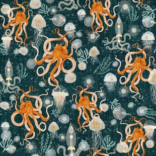 Octopus midnight