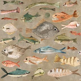 Fish brown