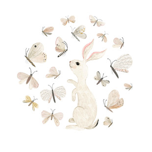 Bunny and butterflies