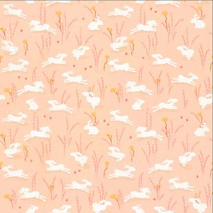 Bunnies peach