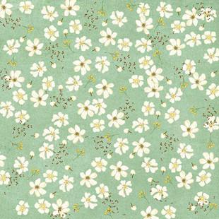 Manuka floral