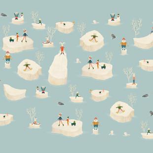 Arctic festival