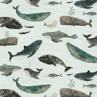 Tattooed whales