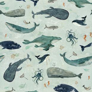 whales soft blue