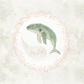 Humpback hello