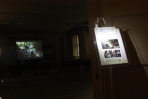 Shrine Island Exhibition Koshirou Yoshimatsu