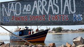 Porque a Greenpeace está a lançar pedras para o mar?