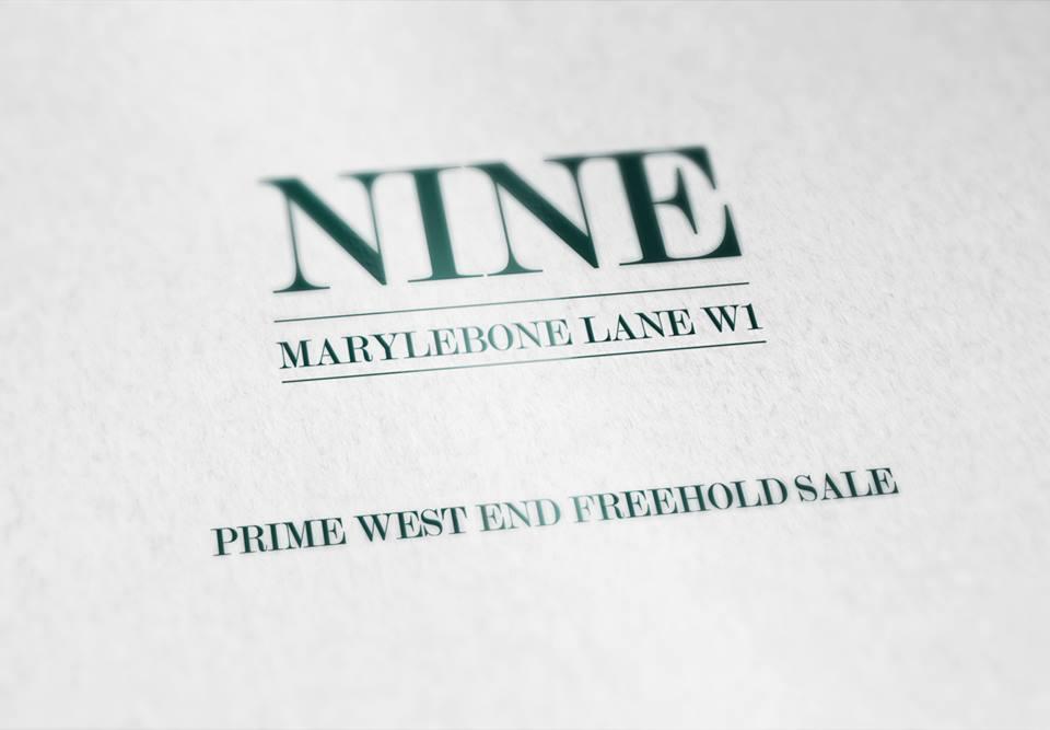 Branding & Brochure Design