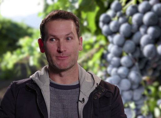 DAPPLED WINES - MEET THE MAKER - SHAIN CRINON