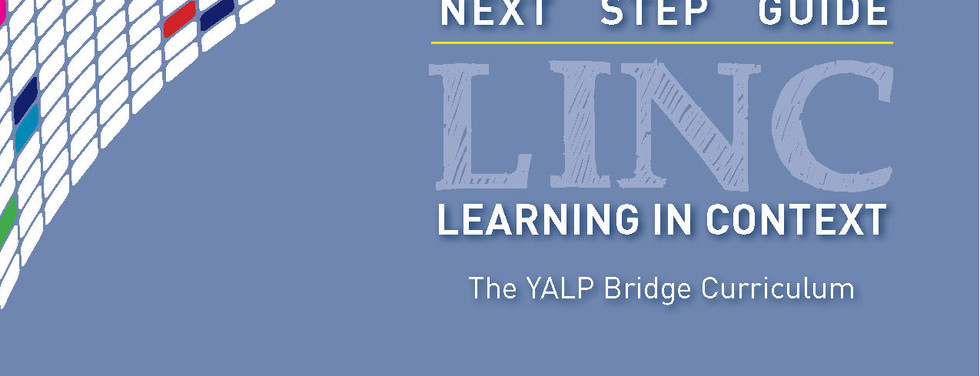 Young Adult Literacy Program Curriculum Guide