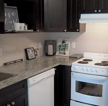 228 Albert_Property Banner-Kitchen.png