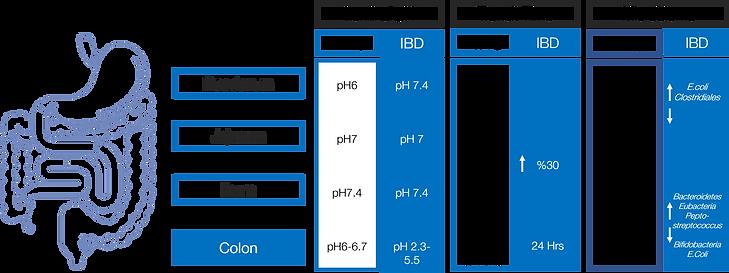 Colon comparisons graphic 002.pptx.png