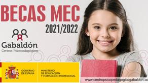 Becas 2021-2022 para alumnos con necesidad de apoyo educativo