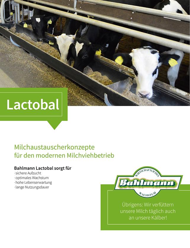 Lactobal_Homepage.png