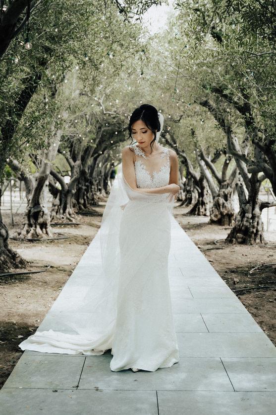 San Jose Wedding.jpeg