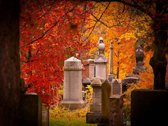 Mount Pleasant Cemetery.png