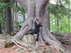 christyn+tree
