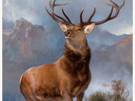 """Landseer's """"The Monarch of the Glen"""" Review – The National Gallery"""