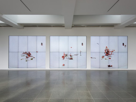 Ian Cheng: BOB Exhibition Review - Serpentine Gallery