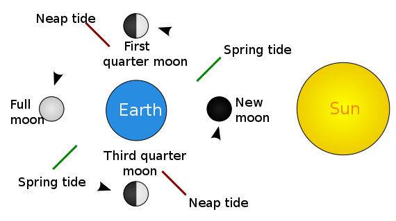 Tides Chart.jpg