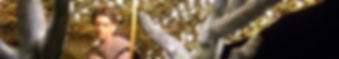 2009_matt-scott_9a8bc2a76f75b09f2aaaffe5